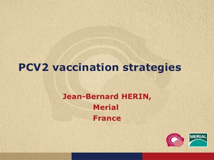 PCV2 vaccination strategies Jean-Bernard HERIN, Merial  France