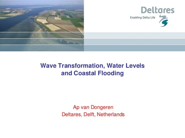 Wave Transformation, Water Levels and Coastal Flooding Ap van Dongeren Deltares, Delft, Netherlands