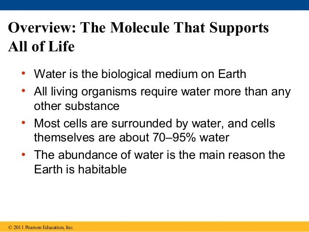 03 water and life Slide 2