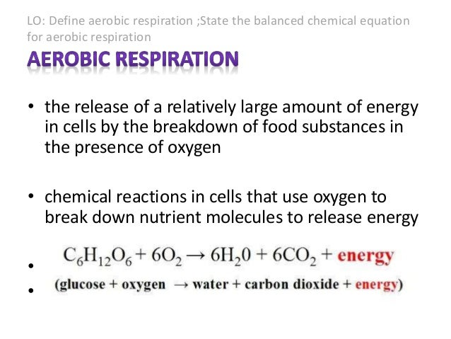 aerobic respiration equation. 10. lo: define aerobic respiration equation r