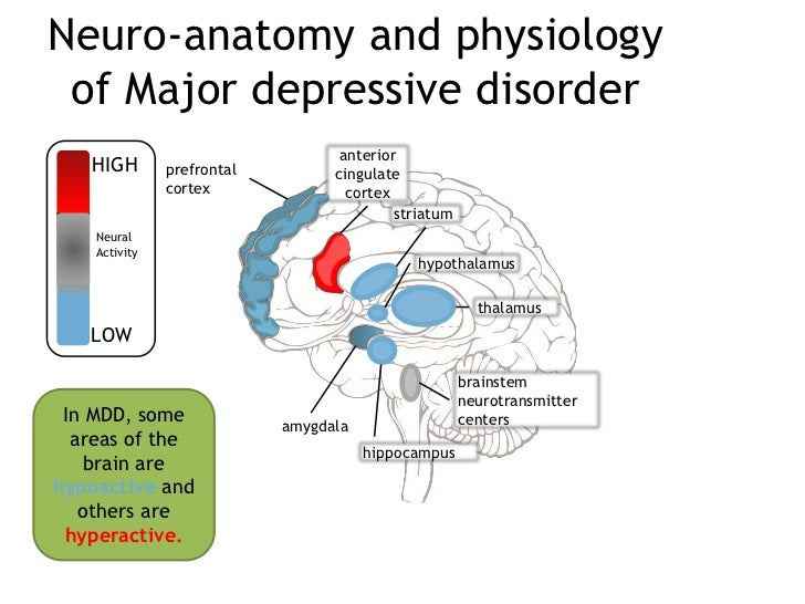 Depression in anatomy