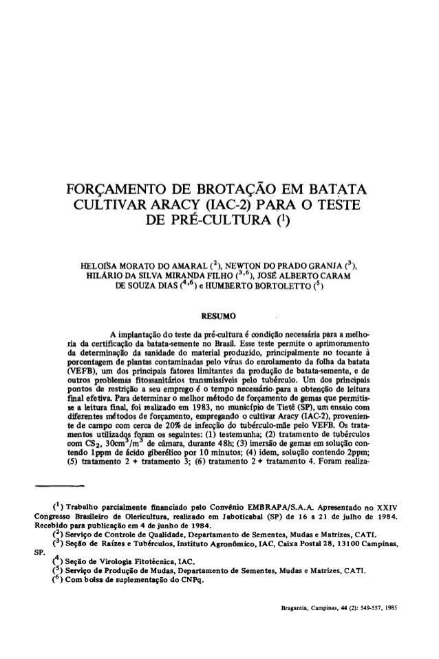 FORÇAMENTO DE BROTAÇÃO EM BATATA            CULTIVAR ARACY (IAC-2) PARA O TESTE                    DE PRÉ-CULTURA 0       ...