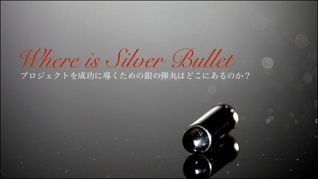 Where is Silver Bullet  プロジェクトを成功に導くための銀の弾丸はどこにあるのか?