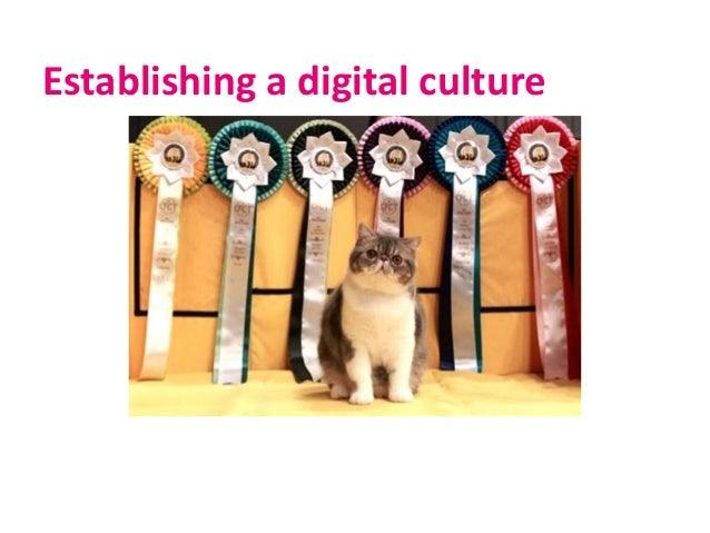Establishing a digital culture