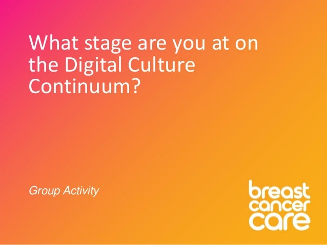What stage are you at on the Digital Culture Continuum? Group Activity