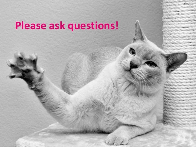 Please ask questions!