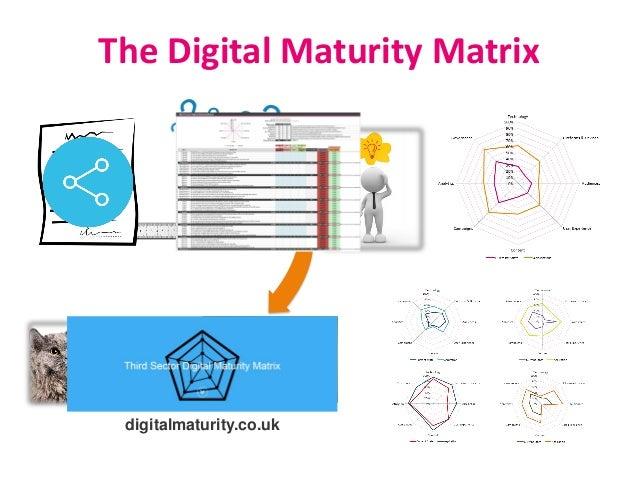 digitalmaturity.co.uk The Digital Maturity Matrix