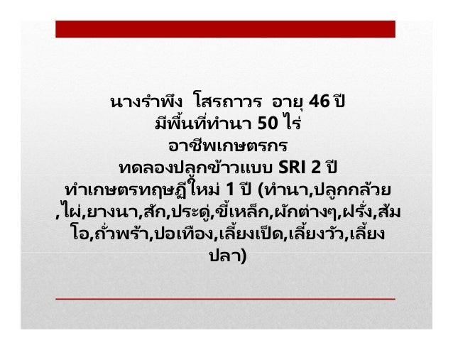 นางรําพึง โสรถาวร อายุ 46 ปี มีพืนทีทํานา 50 ไร่ อาชีพเกษตรกร ทดลองปลูกข้าวแบบ SRI 2 ปี ทําเกษตรทฤษฏีใหม่ 1 ปี (ทํานา,ปลูก...
