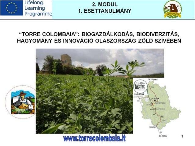 Biomassza és megújuló energiaforrások a mezőgazdaságban - Esettanulmány