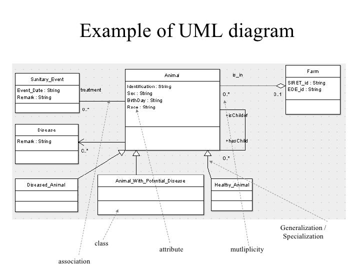 using uml for ontology construction  a case study in agriculture