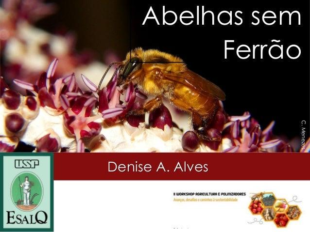 Denise A. Alves  Giorgio Venturieri  Abelhas sem Ferrão  C. Menezes
