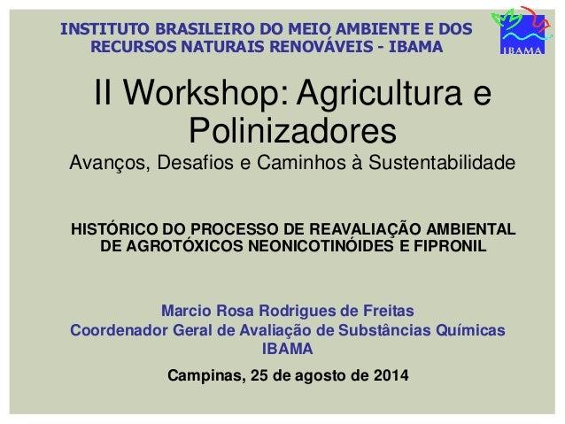 INSTITUTO BRASILEIRO DO MEIO AMBIENTE E DOS RECURSOS NATURAIS RENOVÁVEIS - IBAMA II Workshop: Agricultura e Polinizadores ...