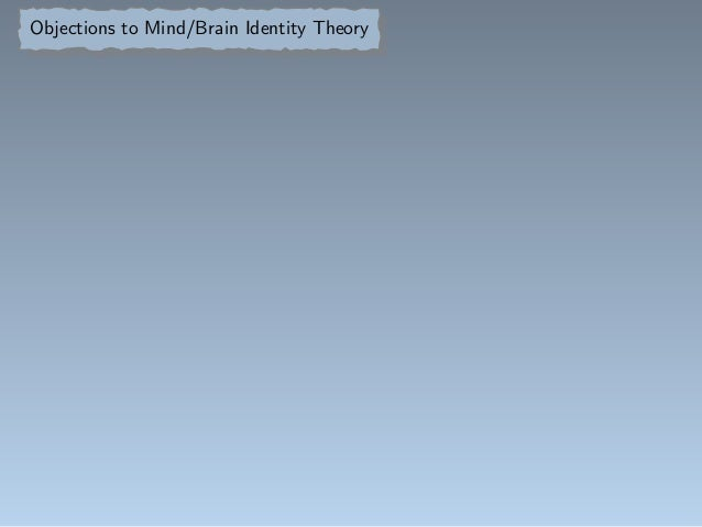 Mind brain identity theory