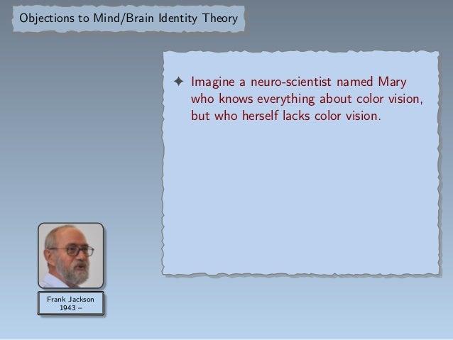 Mind-brain identity theory objection
