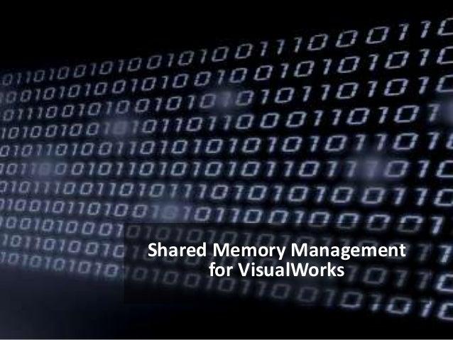 Shared Memory Management for VisualWorks