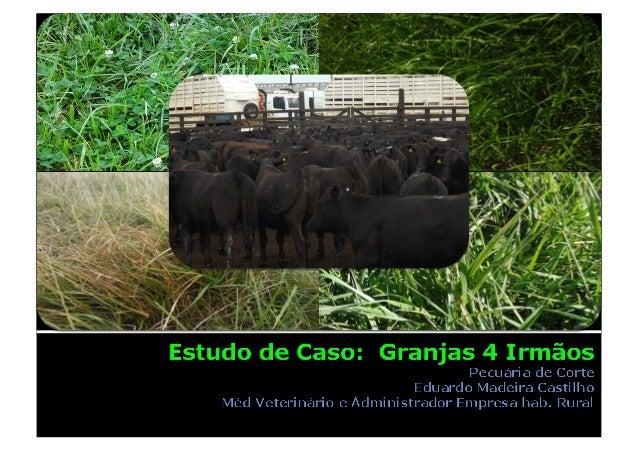  Rio Grande  24.000 hectares  Costa da Lagoa Mirim ▪ Arroz ▪ Soja ▪ Carne ▪ Leite