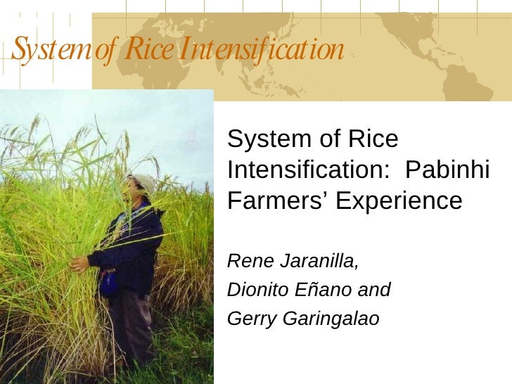 System of Rice Intensification  System of Rice Intensification:  Pabinhi Farmers' Experience Rene Jaranilla,  Dionito Eñan...