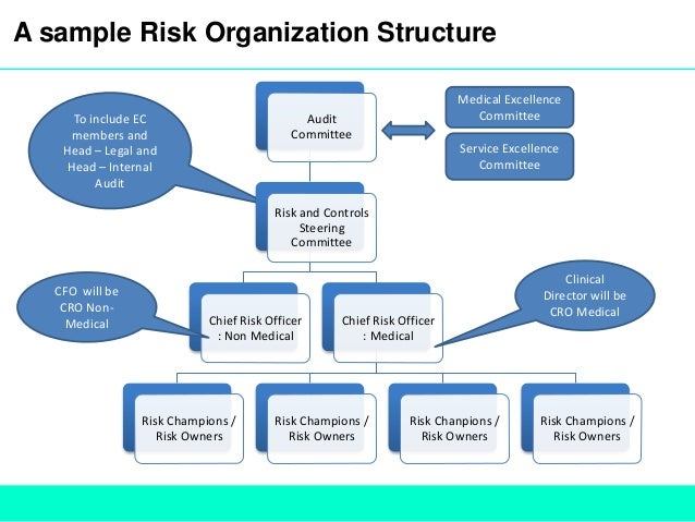 role of risk management in an organisation Managing risks: a new framework  each approach requires quite different structures and roles for a risk-management  for these organizations, risk management.
