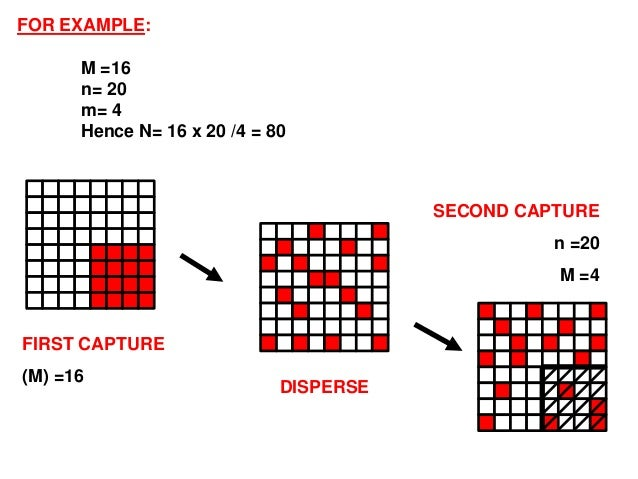 capture recapture method The capture-recapture method is one of the methods for estimating the size of wildlife populations and is based on the hypergeometric distribution recall.