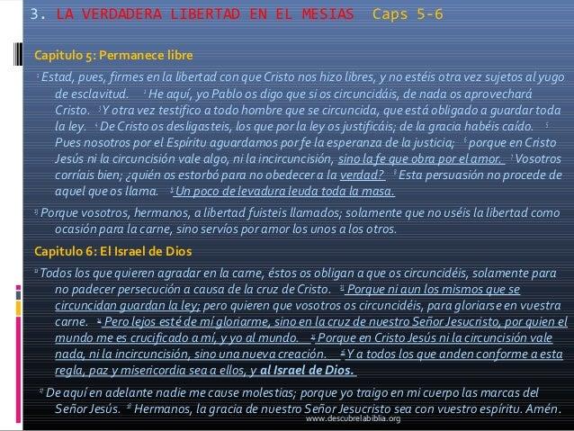 3. LA VERDADERA LIBERTAD EN EL MESIAS                                     Caps 5-6Capitulo 5: Permanece libre 1      Estad...
