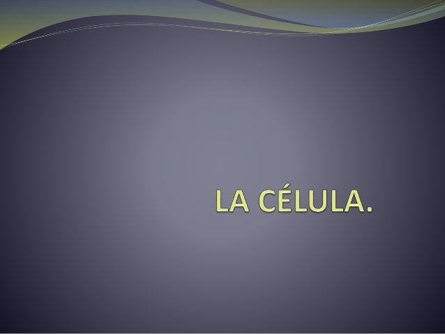 ÍNDICE:  Teoría celular.  Características.  Tipos.  Los virus.  Las bacterias.  Membrana celular.  Pared vegetal. ...
