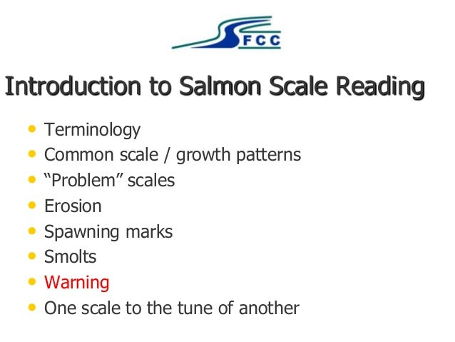 "Introduction to Salmon Scale Reading • Terminology • Common scale / growth patterns • ""Problem"" scales • Erosion • Spawnin..."