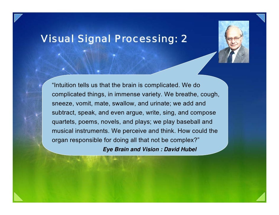 """Visual Signal Processing: 2      """"Intuition tells us that the brain is complicated. We do   complicated things, in immense..."""