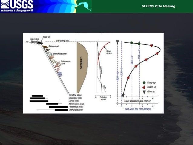 Reefs, Sediment and Shorelines UFORIC Slide 3