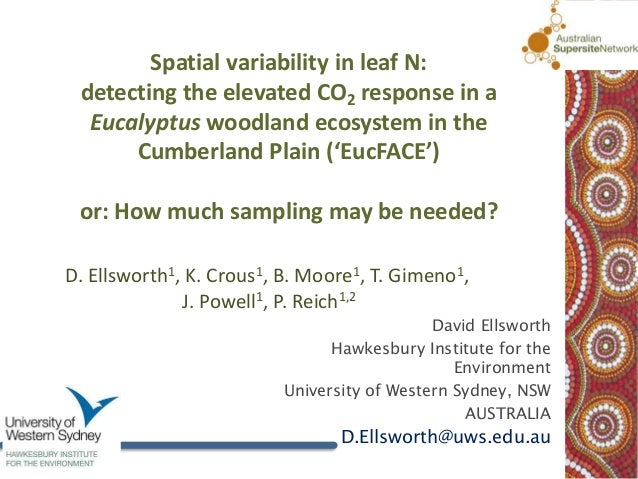 Spatial variability in leaf N: detecting the elevated CO2 response in a  Eucalyptus woodland ecosystem in the      Cumberl...