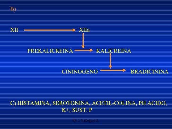 Dr. J. Velásquez G. B) XII XIIa PREKALICREINA KALICREINA CININOGENO BRADICININA C) HISTAMINA, SEROTONINA, ACETIL-COLINA, P...