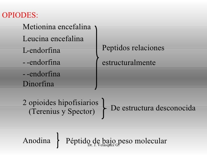 Dr. J. Velásquez G. OPIODES: Metionina encefalina Leucina encefalina  -endorfina  -endorfina  -endorfina Dinorfina 2 op...