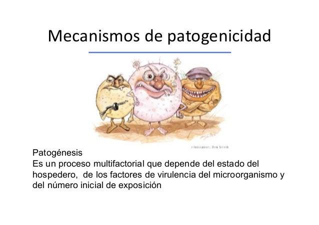 MecanismosdepatogenicidadPatogénesisEs un proceso multifactorial que depende del estado delhospedero, de los factores d...