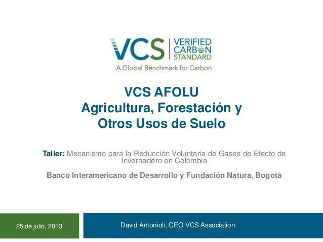 VCS AFOLU Agricultura, Forestación y Otros Usos de Suelo David Antonioli, CEO VCS Association Taller: Mecanismo para la Re...