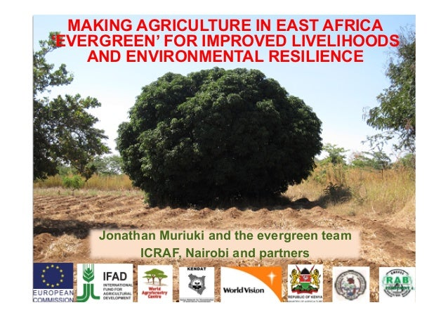 Jonathan Muriuki and the evergreen team ICRAF, Nairobi and partners MAKING AGRICULTURE IN EAST AFRICA 'EVERGREEN' FOR IMPR...