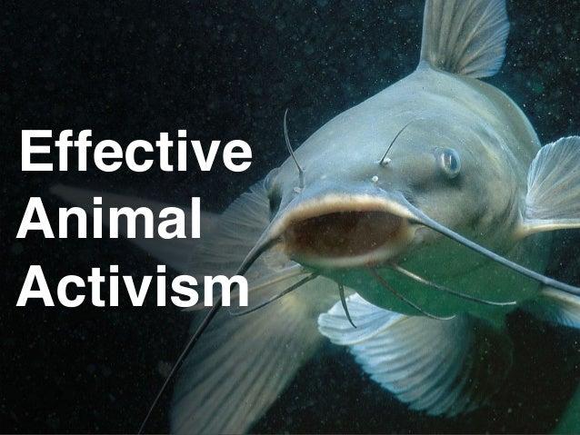 Effective Animal Activism