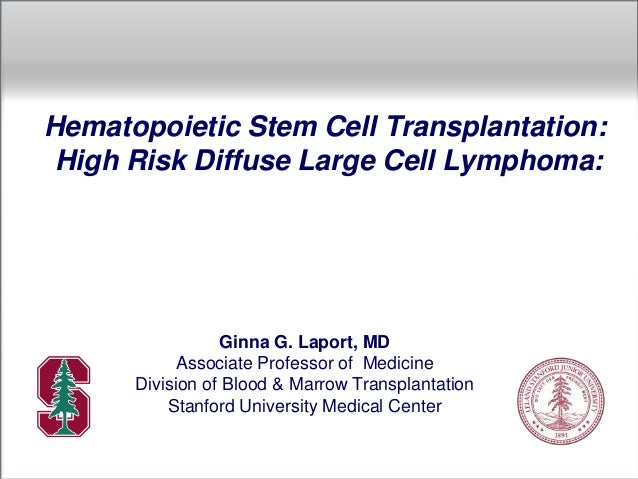 Hematopoietic Stem Cell Transplantation: High Risk Diffuse Large Cell Lymphoma: Ginna G. Laport, MD Associate Professor of...