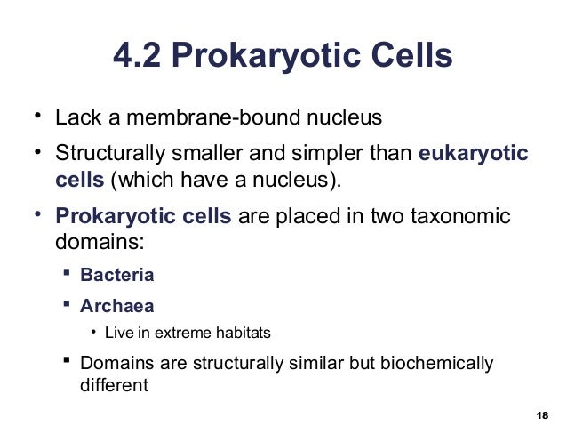 04 lecture ppt cell structure and function  04 lecture ppt ...