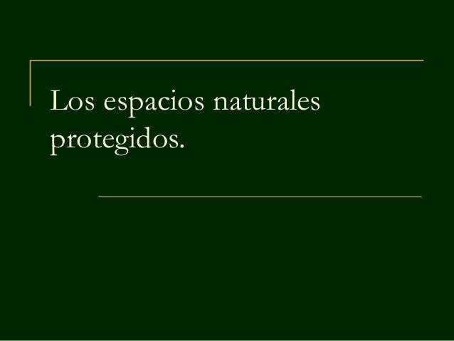 Los espacios naturales protegidos.