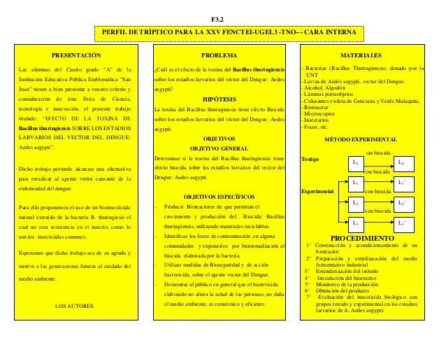 F3.2 PROBLEMA ¿Cuál es el efecto de la toxina del Bacillus thuringiensis sobre los estadíos larvarios del véctor del Dengu...