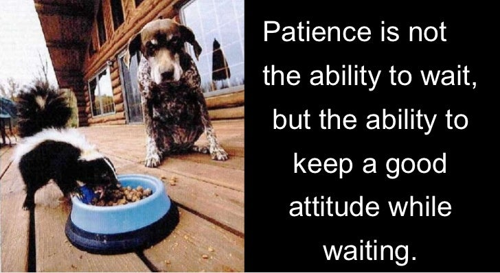 Imagini pentru patience is not ability to wait but ability to keep a good attitude while waiting