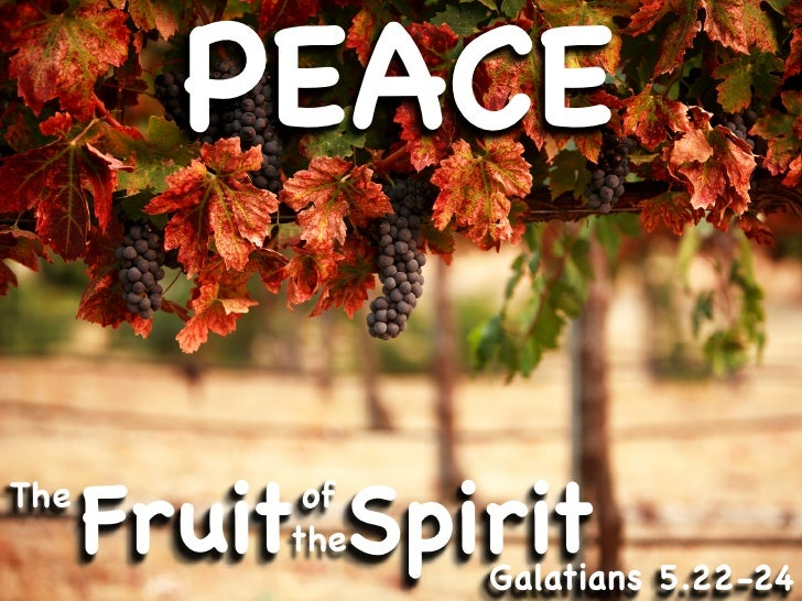 Image result for The fruit of the Spirit is peace
