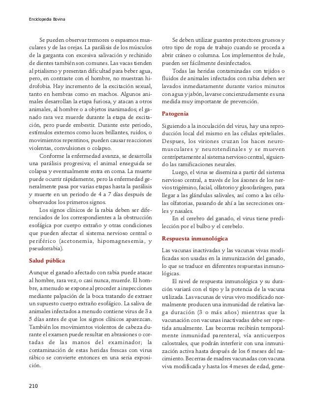 Enciclopedia Bovina 210 Se pueden observar tremores o espasmos mus- culares y de las orejas. La parálisis de los músculos ...
