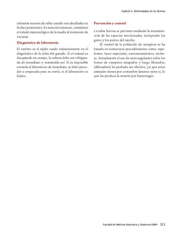 Capítulo 4. Enfermedades de los bovinos Facultad de Medicina Veterinaria y Zootecnia-UNAM 211 ralmente mueren de rabia cua...