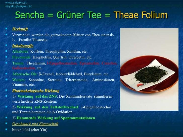 Sencha = Grüner Tee =  Theae Folium <ul><li>Herkunft </li></ul><ul><li>Verwendet  werden die getrockneten Blätter von Thea...