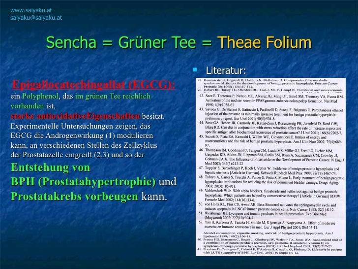 Sencha = Grüner Tee =  Theae Folium <ul><li>Epigallocatechingallat (EGCG):   </li></ul><ul><li>ein  Polyphenol , das  im g...