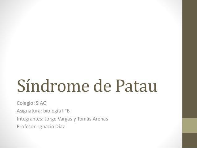 Síndrome de Patau Colegio: SIAO Asignatura: biología II°B Integrantes: Jorge Vargas y Tomás Arenas Profesor: Ignacio Díaz
