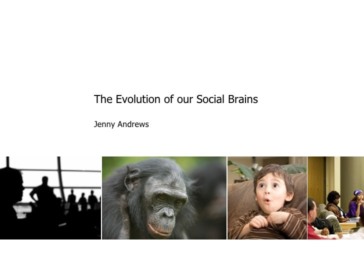 The Evolution of our Social Brains  Jenny Andrews