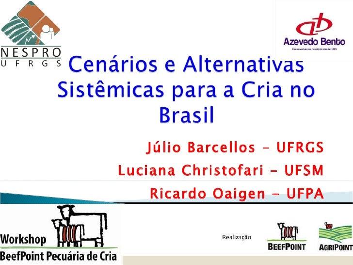 Júlio Barcellos - UFRGS Luciana Christofari - UFSM Ricardo Oaigen - UFPA