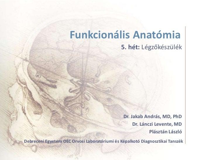 Funkcionális Anatómia                                              5. hét: Légzőkészülék                                  ...