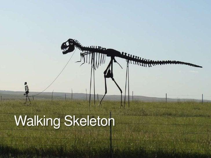 Walking Skeleton<br />